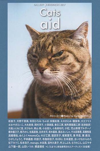 Catsaid
