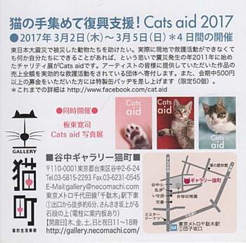 Catsaid2_2