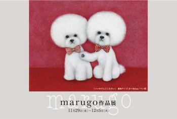 Marugo_dm__ol2
